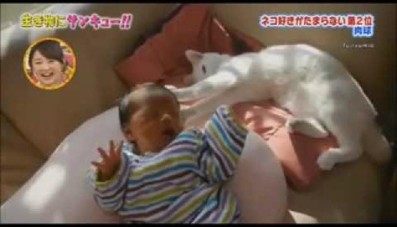 えっホント?猫の肉球には赤ちゃんを安心させるパワーがあるの?