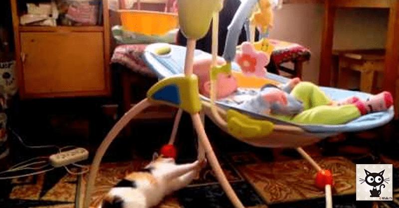 猫ちゃんが遊ぶと赤ちゃんもごきげんのWIN-WINの関係(*´ェ`*)