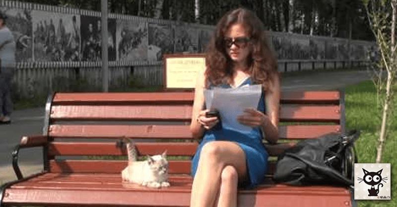 【スキあらば!!!】美女の膝の上に乗ろうと何度もチャレンジする猫は成功するのか!?