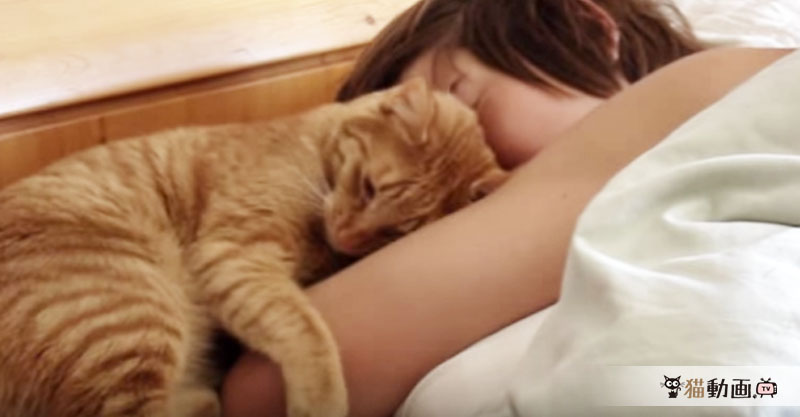 飼い主さんが大好きすぎる猫さんのスリスリが見ていて幸せな気持ちに💕