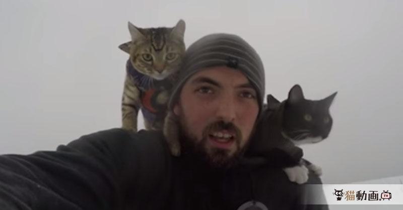 猫さんを肩に乗せてソリ遊びをする男性ですが、思ったより激しかったようです💦
