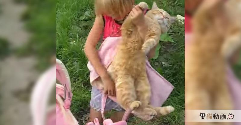 なすがままの無抵抗猫さんは女の子にされるがままです( ´艸`)