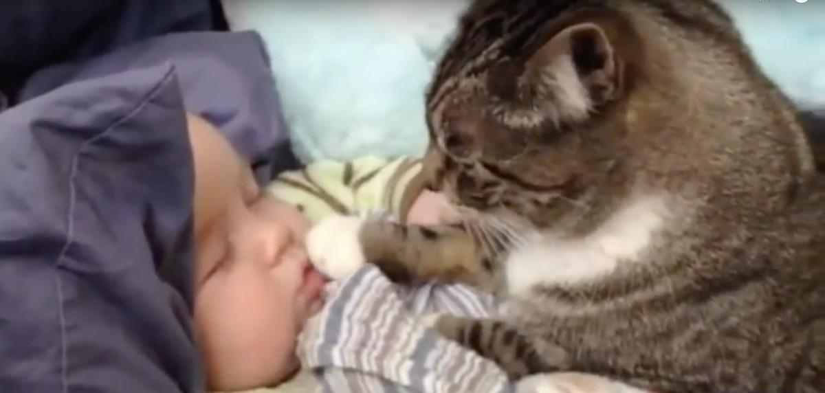 寝ている赤ちゃんの唇をツンツン( *`ェ´)σ)゚Д゚`) 二人のやりとりが終始可愛い♡