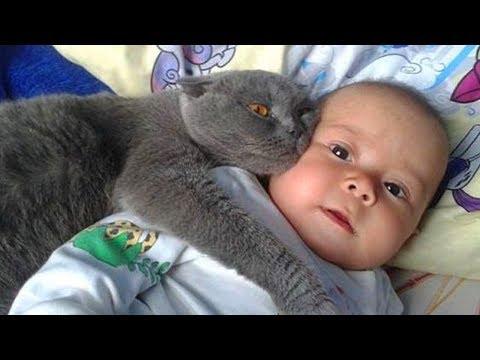 赤ちゃんとネコちゃんのやりとりがまるで親子のようです( ᐢ˙꒳˙ᐢ )