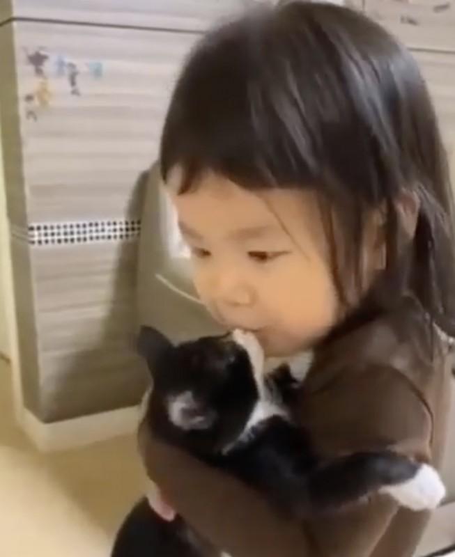 ネコとイチャイチャな子供たち😻😻