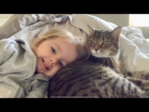 猫「まったく…子供は嫌いだぜ!」