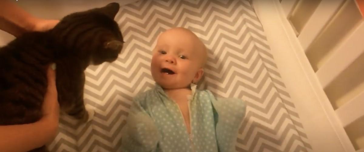 赤ちゃんは猫のこと好きみたいなんだけど、猫の知らんぷりが凄くクールです😻